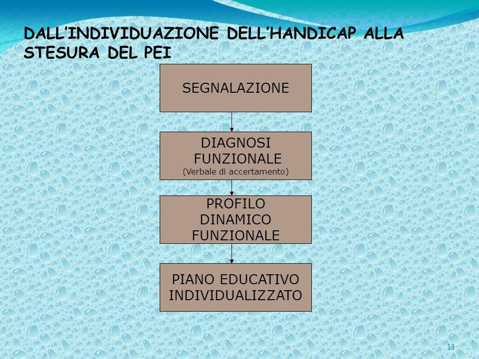 13 DALLINDIVIDUAZIONE DELLHANDICAP ALLA STESURA DEL PEI SEGNALAZIONE DIAGNOSI FUNZIONALE (Verbale di accertamento) PROFILO DINAMICO FUNZIONALE PIANO EDUCATIVO INDIVIDUALIZZATO