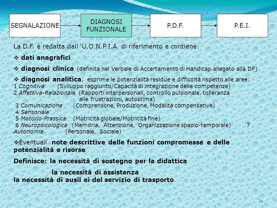 14 SEGNALAZIONE DIAGNOSI FUNZIONALE P.D.F.P.E.I. La D.F. è redatta dall U.O.N.P.I.A. di riferimento e contiene: dati anagrafici diagnosi clinica (defi