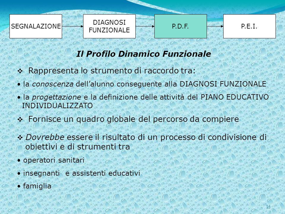 15 SEGNALAZIONE DIAGNOSI FUNZIONALE P.D.F.P.E.I. Rappresenta lo strumento di raccordo tra: la conoscenza dellalunno conseguente alla DIAGNOSI FUNZIONA