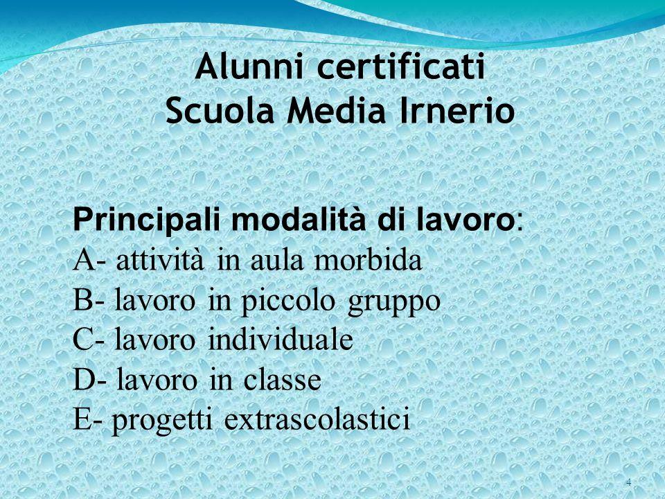 4 Alunni certificati Scuola Media Irnerio Principali modalità di lavoro: A- attività in aula morbida B- lavoro in piccolo gruppo C- lavoro individuale