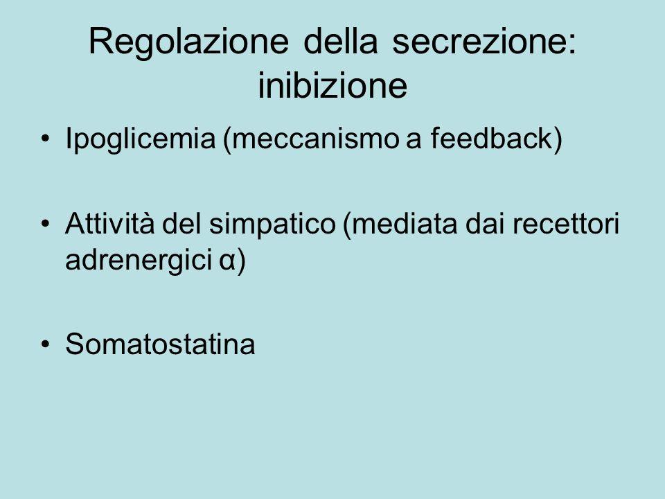 Regolazione della secrezione: inibizione Ipoglicemia (meccanismo a feedback) Attività del simpatico (mediata dai recettori adrenergici α) Somatostatin