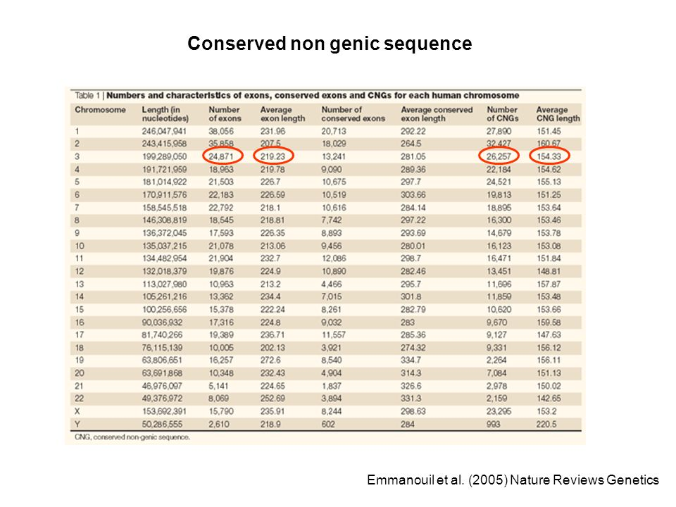 Conserved non genic sequence