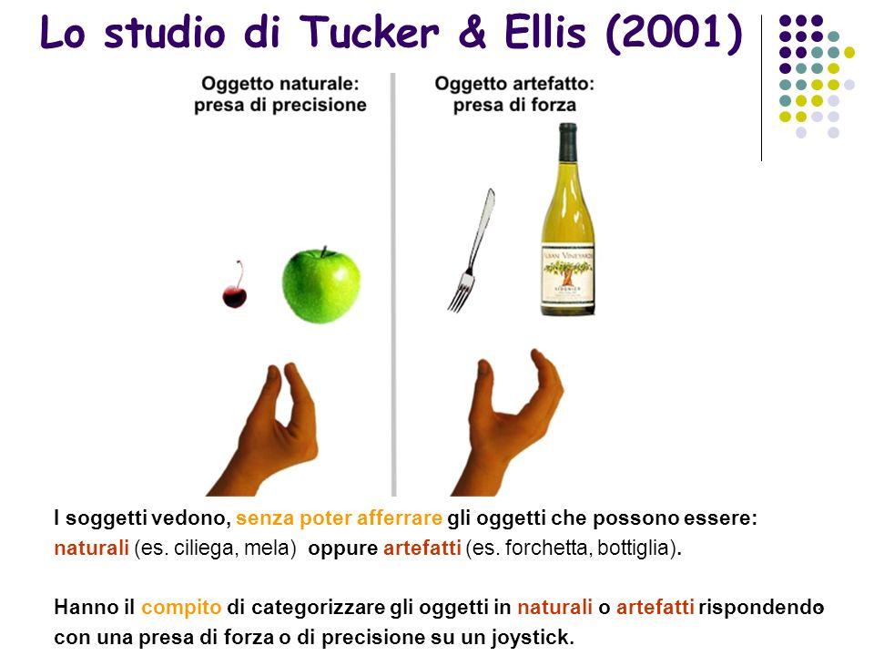 3 Lo studio di Tucker & Ellis (2001) I soggetti vedono, senza poter afferrare gli oggetti che possono essere: naturali (es.