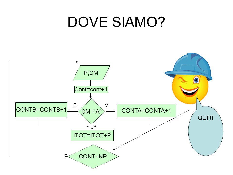 DOVE SIAMO? v F F P;CM Cont=cont+1 CM=A CONTA=CONTA+1 CONTB=CONTB+1 ITOT=ITOT+P CONT=NP QUI!!!