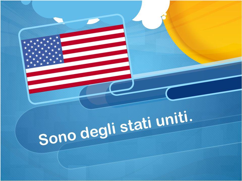 Sono degli stati uniti.