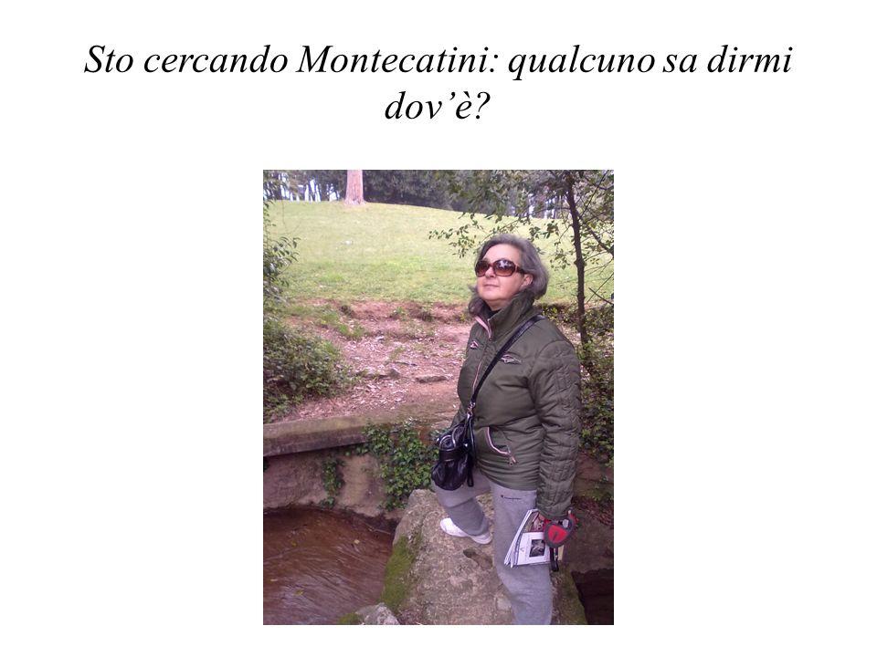 Sto cercando Montecatini: qualcuno sa dirmi dovè