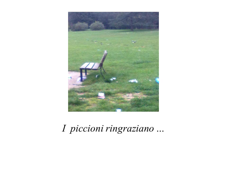 I piccioni ringraziano …