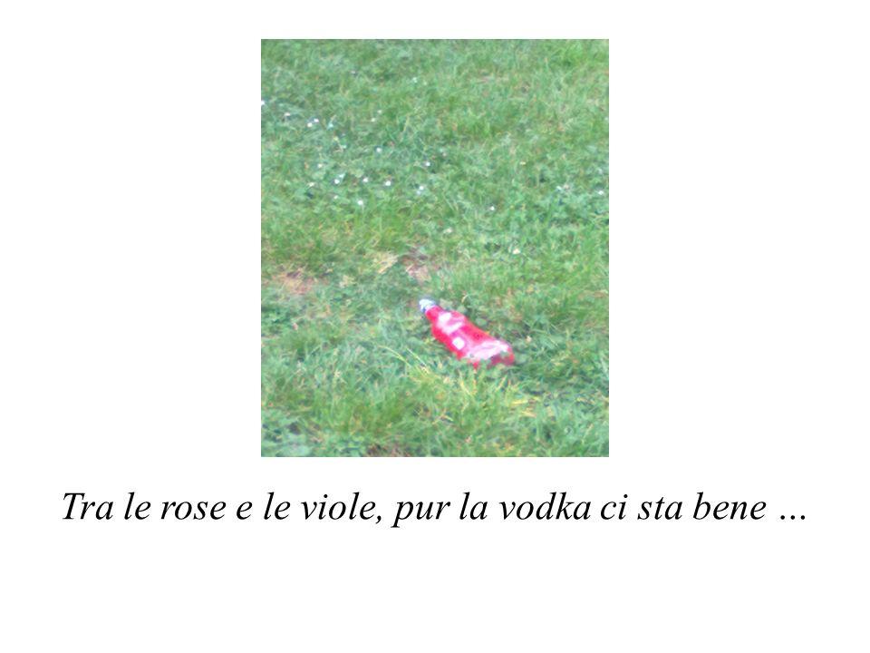 Tra le rose e le viole, pur la vodka ci sta bene …