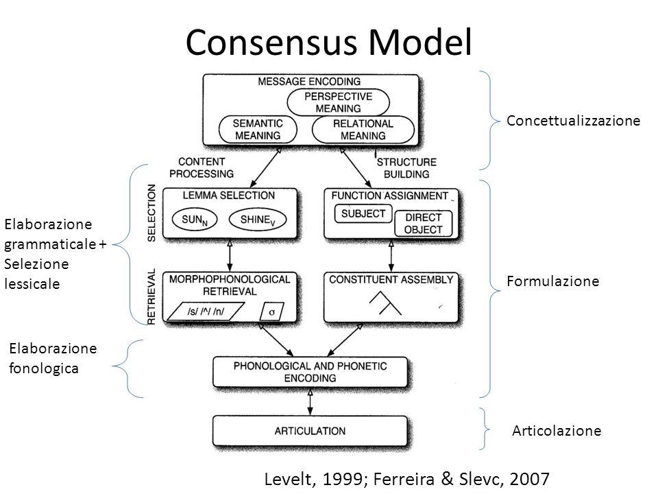 Attribuzione dei ruoli sintattici Elaborazione grammaticale (Bock et al., 1992) Posizionamento nella struttura frasale Livello Funzionale Livello Posizionale