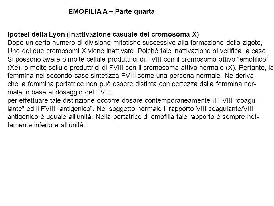 EMOFILIA A – Parte quarta Ipotesi della Lyon (inattivazione casuale del cromosoma X) Dopo un certo numero di divisione mitotiche successive alla forma