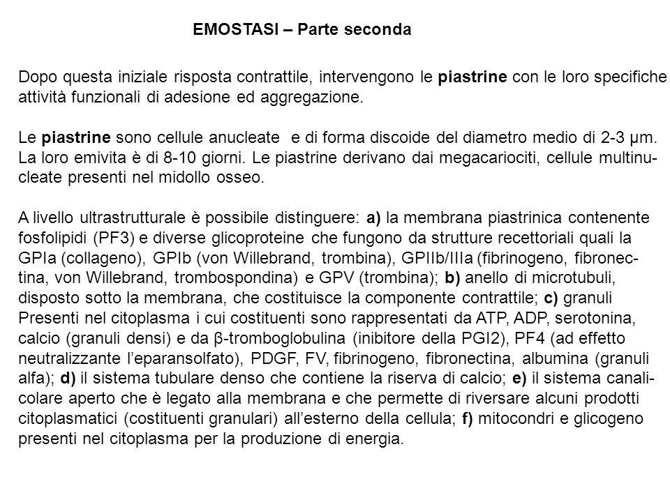 EMOSTASI – Parte seconda Dopo questa iniziale risposta contrattile, intervengono le piastrine con le loro specifiche attività funzionali di adesione e