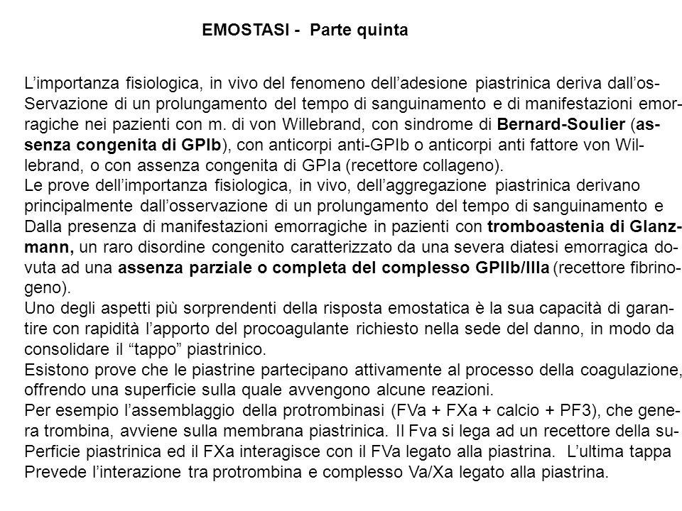 EMOSTASI - Parte quinta Limportanza fisiologica, in vivo del fenomeno delladesione piastrinica deriva dallos- Servazione di un prolungamento del tempo