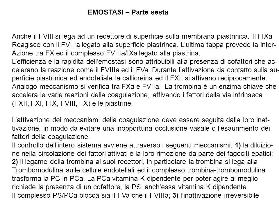 EMOSTASI – Parte sesta Anche il FVIII si lega ad un recettore di superficie sulla membrana piastrinica. Il FIXa Reagisce con il FVIIIa legato alla sup
