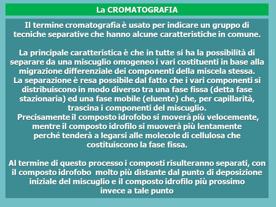 Il termine cromatografia è usato per indicare un gruppo di tecniche separative che hanno alcune caratteristiche in comune.