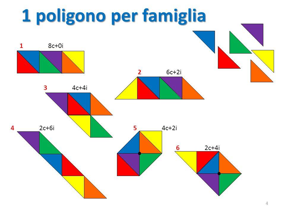 1 poligono per famiglia 4 18c+0i 26c+2i 42c+6i 34c+4i 54c+2i 62c+4i