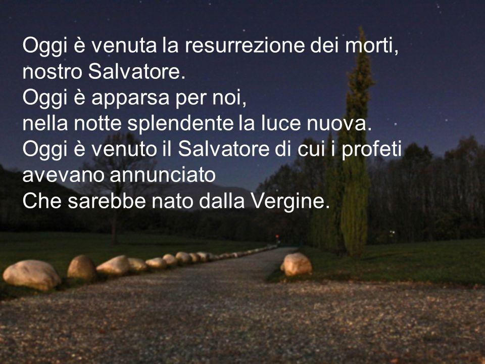 Oggi è venuta la resurrezione dei morti, nostro Salvatore. Oggi è apparsa per noi, nella notte splendente la luce nuova. Oggi è venuto il Salvatore di