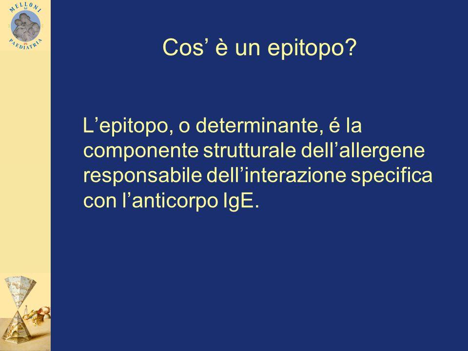 Cos è un epitopo? Lepitopo, o determinante, é la componente strutturale dellallergene responsabile dellinterazione specifica con lanticorpo IgE.