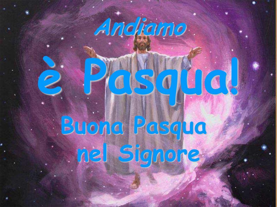 Far Pasqua… …è organizzare la risurrezione del mondo.