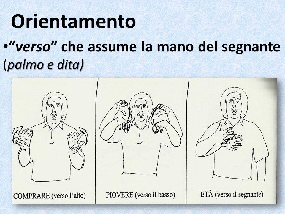 Orientamento palmo e dita)verso che assume la mano del segnante (palmo e dita)