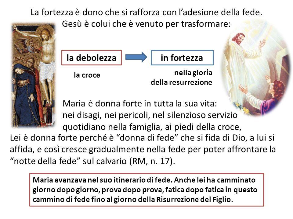 Maria è la donna intelligente Il progetto di Dio, quello di far incarnare la sua Sapienza, il Verbo, è reso possibile dalla collaborazione di una donna intelligente.