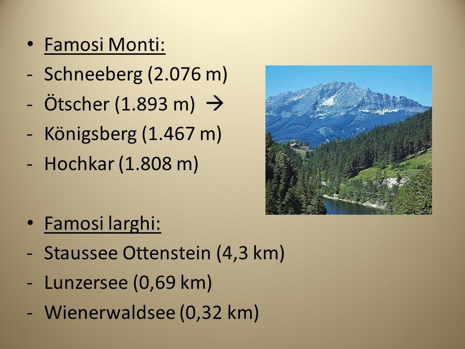 Famosi Monti: -Schneeberg (2.076 m) -Ötscher (1.893 m) -Königsberg (1.467 m) -Hochkar (1.808 m) Famosi larghi: -Staussee Ottenstein (4,3 km) -Lunzerse