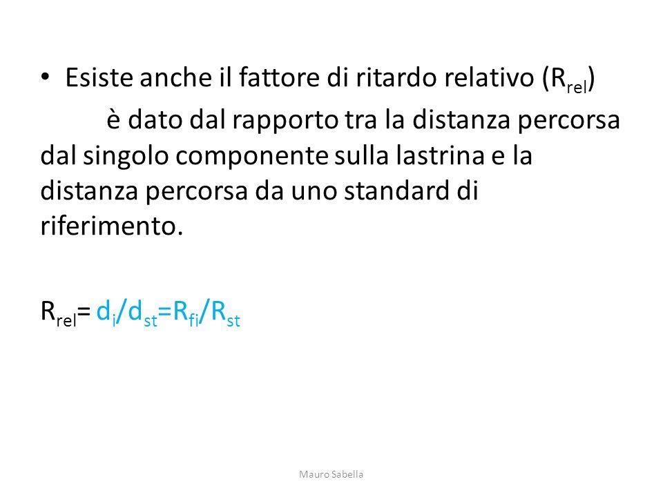 Esiste anche il fattore di ritardo relativo (R rel ) è dato dal rapporto tra la distanza percorsa dal singolo componente sulla lastrina e la distanza
