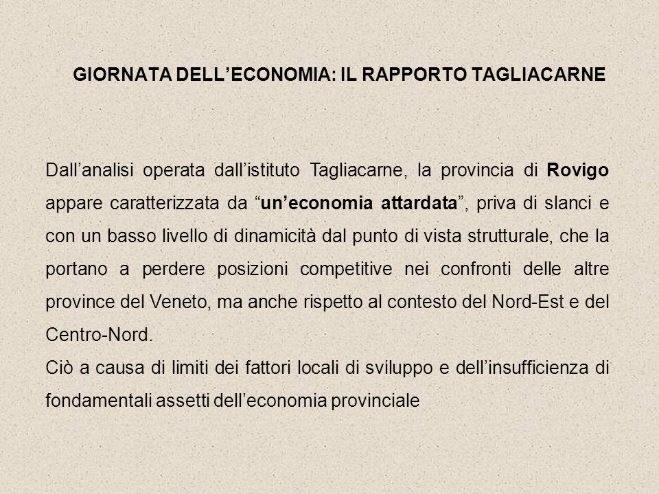 Dallanalisi operata dallistituto Tagliacarne, la provincia di Rovigo appare caratterizzata da uneconomia attardata, priva di slanci e con un basso liv