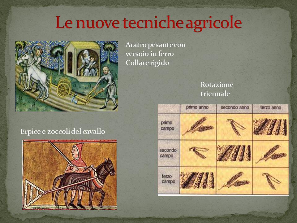 Aratro pesante con versoio in ferro Collare rigido Rotazione triennale Erpice e zoccoli del cavallo