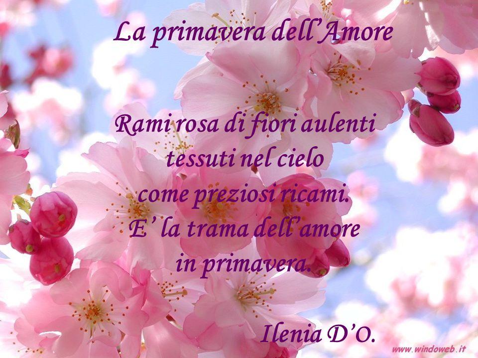 La primavera dellAmore Rami rosa di fiori aulenti tessuti nel cielo come preziosi ricami. E la trama dellamore in primavera. Ilenia D O.