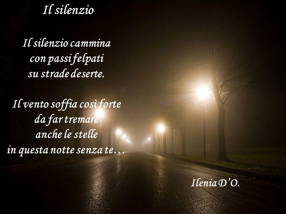 Il silenzio Il silenzio cammina con passi felpati su strade deserte. Il vento soffia così forte da far tremare anche le stelle in questa notte senza t