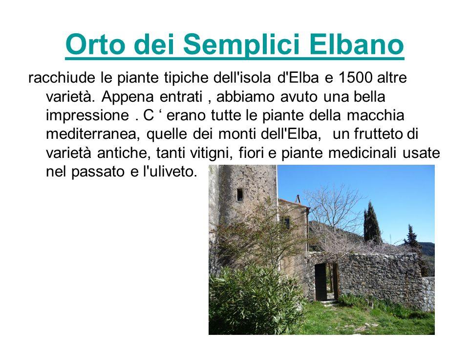 Orto dei Semplici Elbano racchiude le piante tipiche dell isola d Elba e 1500 altre varietà.