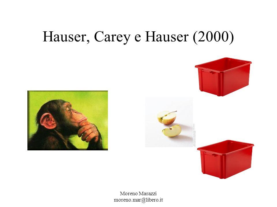 Hauser, Carey e Hauser (2000) Moreno Marazzi moreno.mar@libero.it