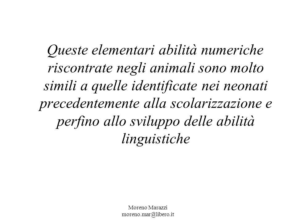 Queste elementari abilità numeriche riscontrate negli animali sono molto simili a quelle identificate nei neonati precedentemente alla scolarizzazione e perfino allo sviluppo delle abilità linguistiche Moreno Marazzi moreno.mar@libero.it