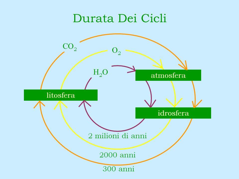 Durata Dei Cicli CO 2 O2O2 300 anni 2000 anni 2 milioni di anni atmosfera idrosfera litosfera H2OH2O
