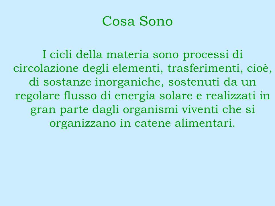 I cicli della materia sono processi di circolazione degli elementi, trasferimenti, cioè, di sostanze inorganiche, sostenuti da un regolare flusso di e
