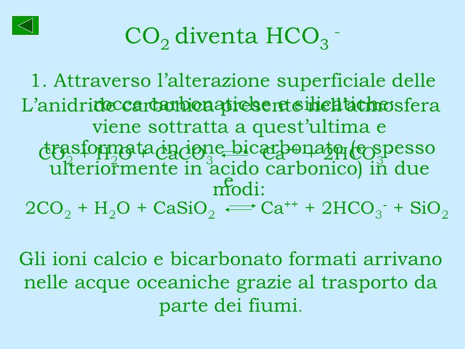 CO 2 diventa HCO 3 - Lanidride carbonica presente nellatmosfera viene sottratta a questultima e trasformata in ione bicarbonato (e spesso ulteriorment