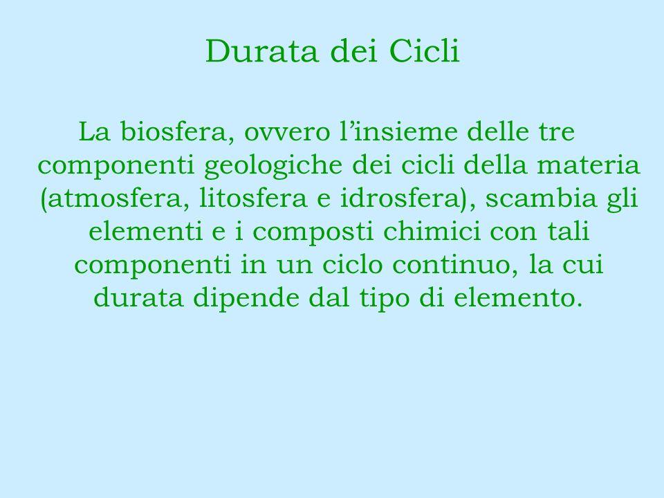 Durata dei Cicli La biosfera, ovvero linsieme delle tre componenti geologiche dei cicli della materia (atmosfera, litosfera e idrosfera), scambia gli