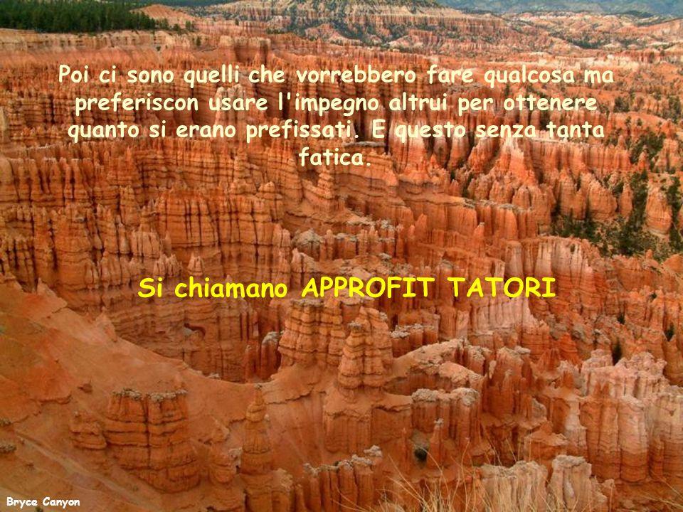 Grand Canyon Alcuni amano seminare zizzania tra gli altri usando maldicenza e critica.