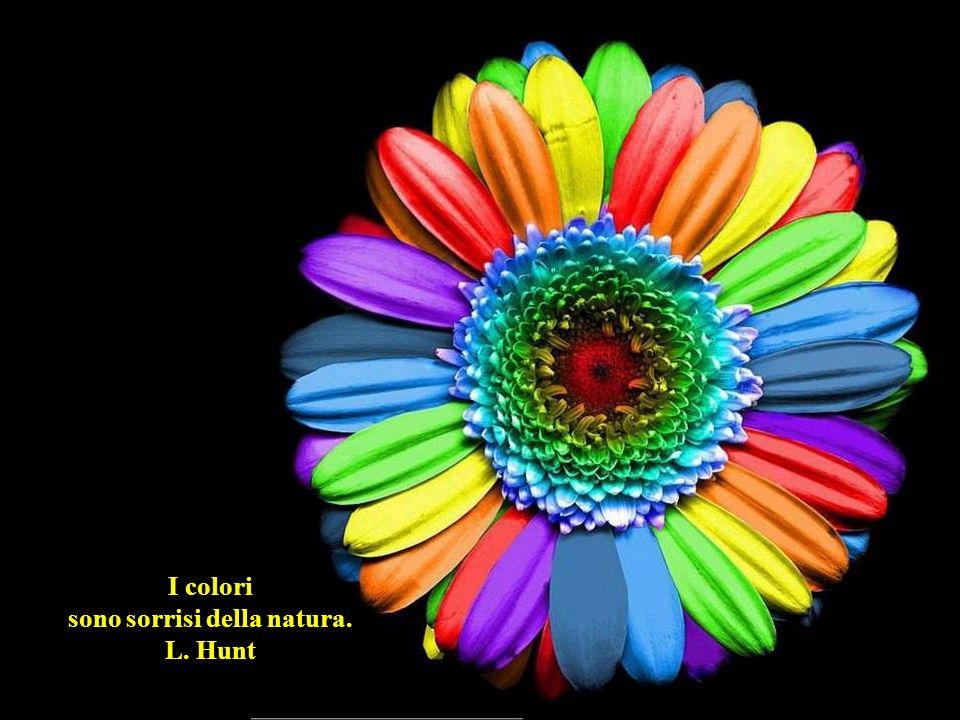 I colori più intensi li tingono le emozioni. Stephen Littleword