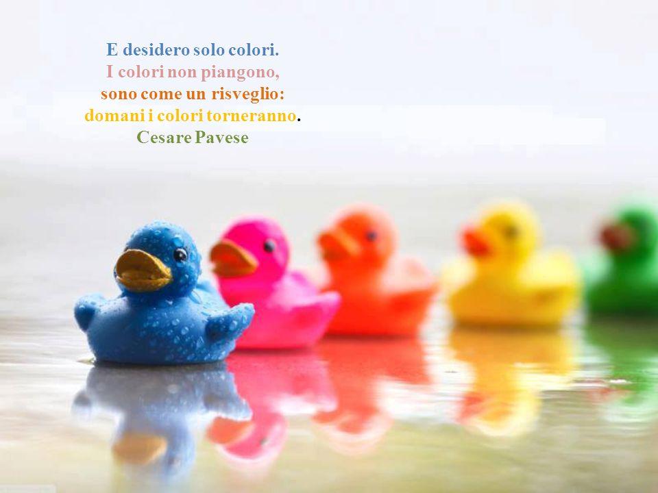 E desidero solo colori.I colori non piangono, sono come un risveglio: domani i colori torneranno.