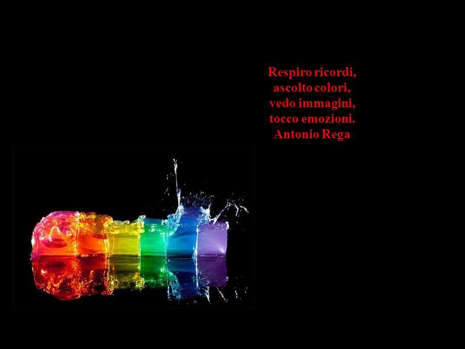 Respiro ricordi, ascolto colori, vedo immagini, tocco emozioni. Antonio Rega