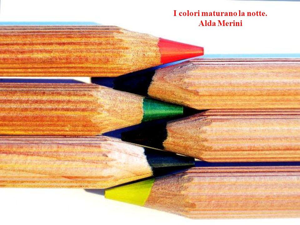I colori maturano la notte. Alda Merini