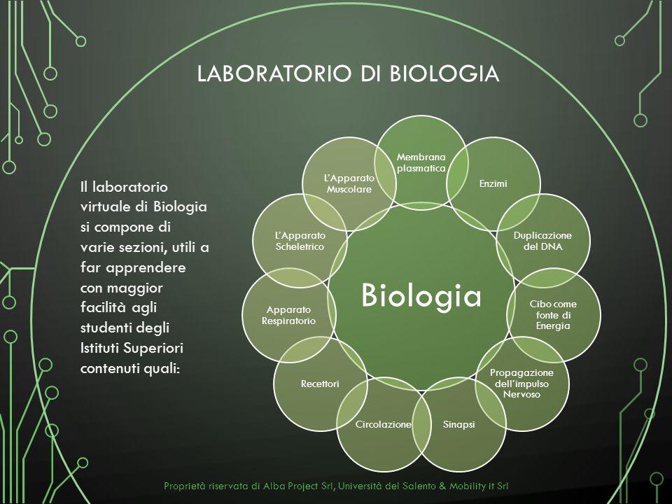 LABORATORIO DI BIOLOGIA Il laboratorio virtuale di Biologia si compone di varie sezioni, utili a far apprendere con maggior facilità agli studenti deg