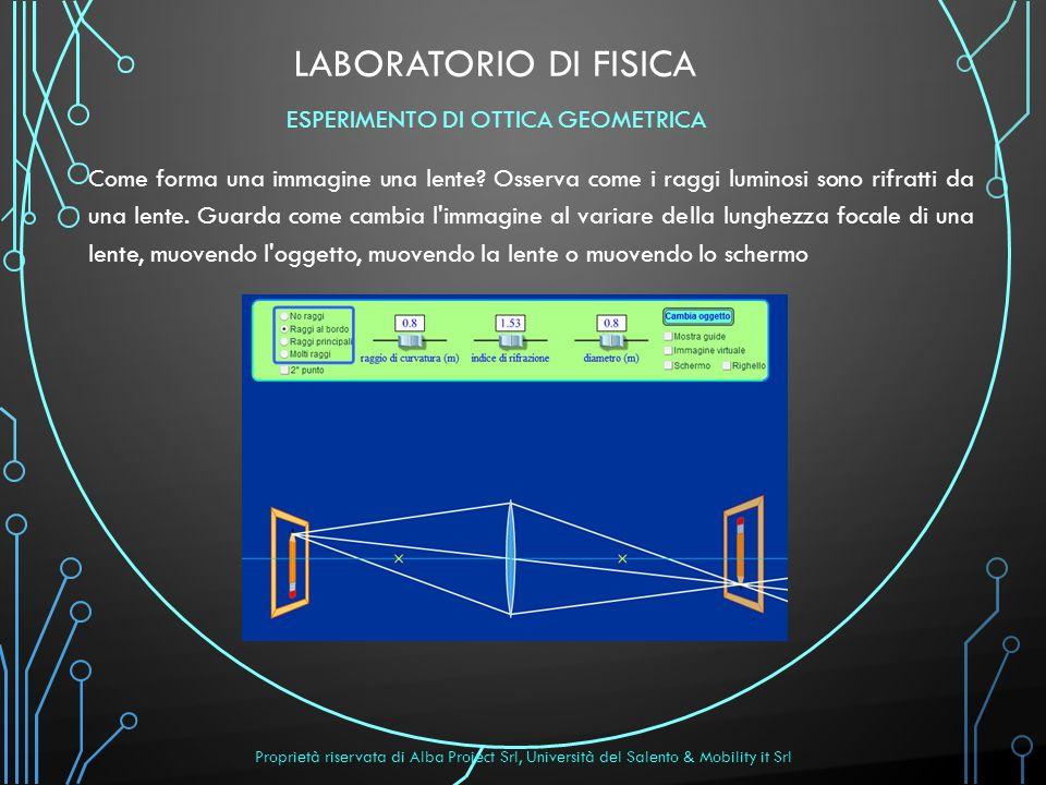 LABORATORIO DI FISICA Come forma una immagine una lente? Osserva come i raggi luminosi sono rifratti da una lente. Guarda come cambia l'immagine al va
