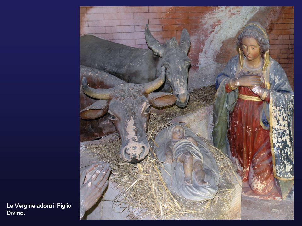 La Vergine adora il Figlio Divino.