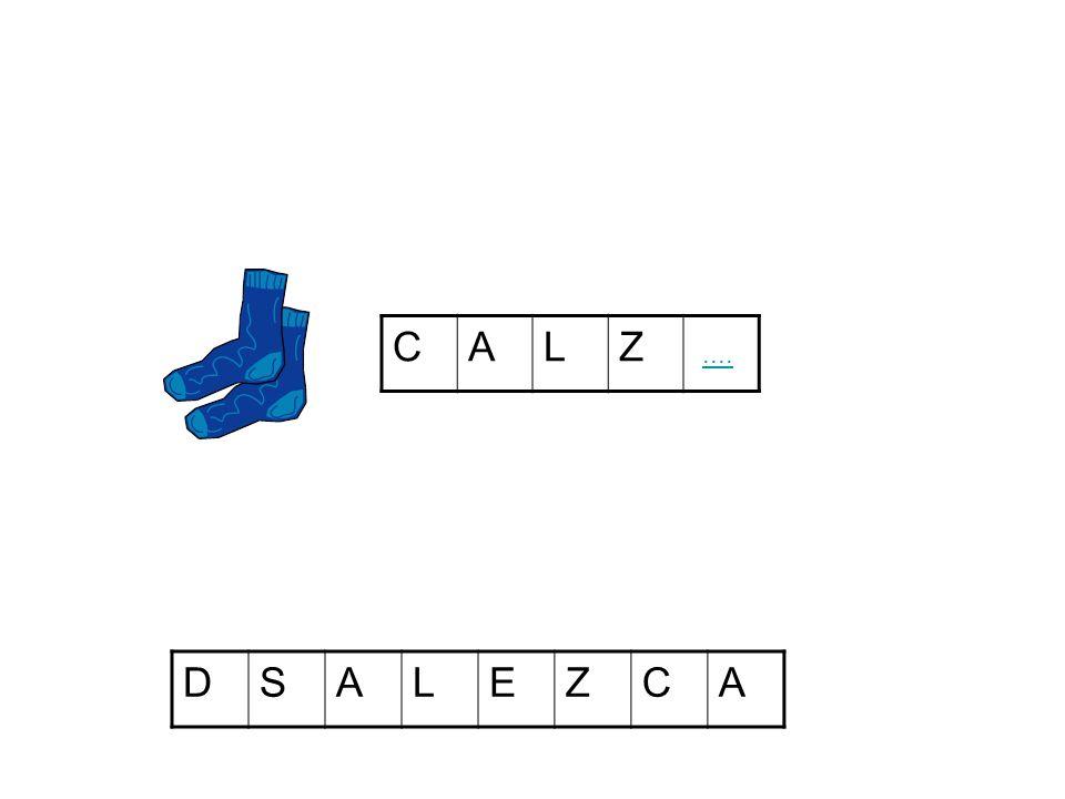 CALZ DSALEZCA
