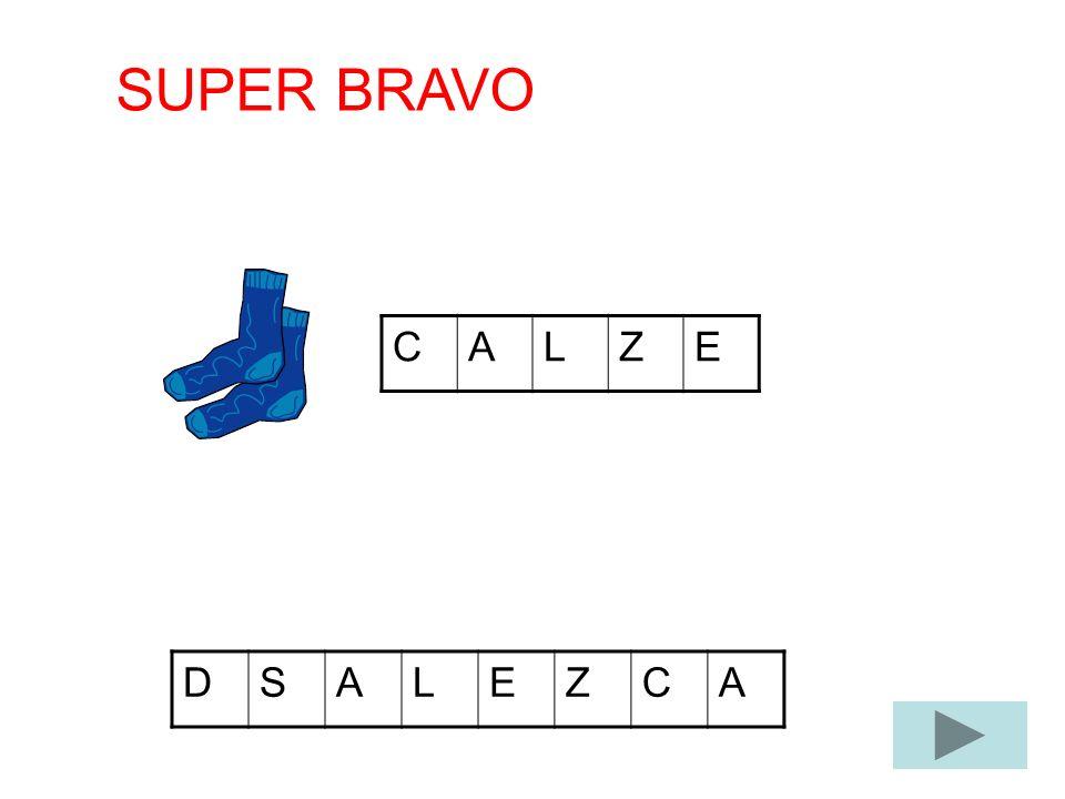 CALZE DSALEZCA SUPER BRAVO