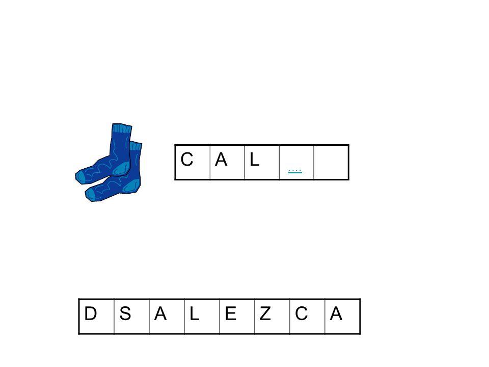 CAL DSALEZCA