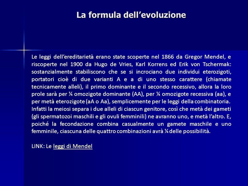 La formula dellevoluzione Le leggi dellereditarietà erano state scoperte nel 1866 da Gregor Mendel, e riscoperte nel 1900 da Hugo de Vries, Karl Korre