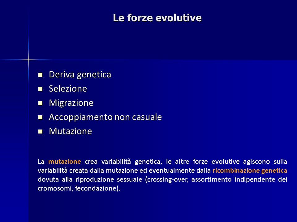 Deriva genetica Deriva genetica Selezione Selezione Migrazione Migrazione Accoppiamento non casuale Accoppiamento non casuale Mutazione Mutazione La m